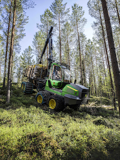 Forestry news, forestry jobs - Woodweek